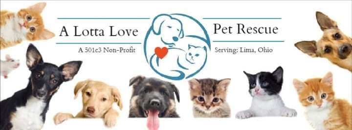A Lotta Love Pet Rescue